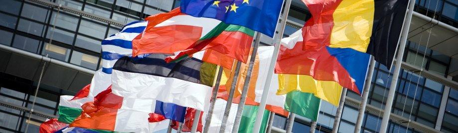 ЕУ-парламентот АНП--29 5 09-