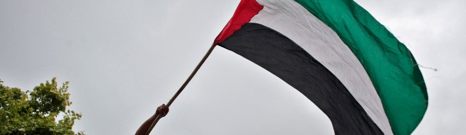 о-палестинско-FLAG-Facebook