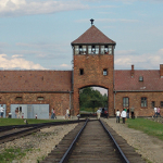 Auschwitz 70th anniversary: Survivors mark camp liberation