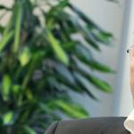 Bernd Lange on TTIP: 'We have to be transparent'