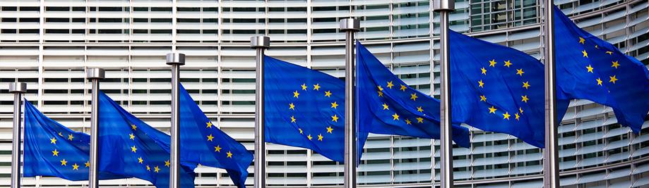 Еуропеан flags