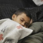 Unaccompanied minors' asylum applications: Process where the kids are, say MEPs