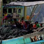 Support grows for EU 'red card' on illegal Thai fishing and slave labour