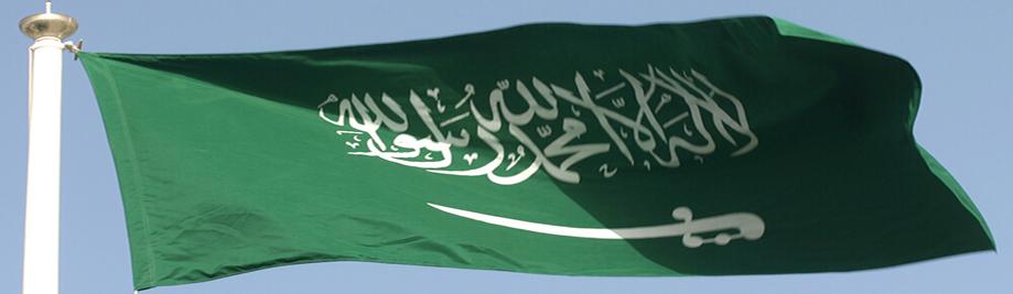 SaudiArabiaFlagPicture1