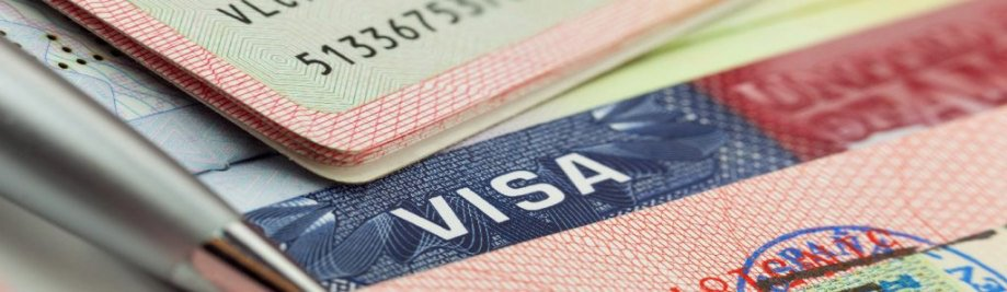 visa-1024x298