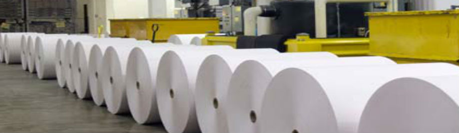 European paper industry calls for reviewed #BioeconomyStrategy that bolsters investment