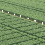 Where economics fails #EU agriculture policy, science quietly steps in