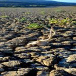 #Drought in #SouthernAfrica – EU releases over €22 million in humanitarian aid