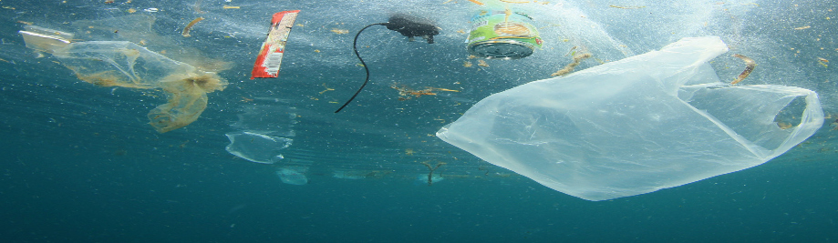 President Tajani: We must act now or there will be more #Plastic than #Fish in our #Oceans by 2050